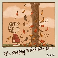 It's starting to look like fall! Snoopy Und Woodstock, Snoopy Love, Peanuts Cartoon, Peanuts Gang, Peanuts Comics, Snoopy Pictures, Snoopy Quotes, Peanuts Quotes, Autumn Scenes