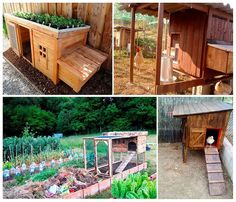 How To Make A Chicken Coop With Pallets