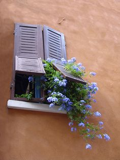 Emilia-Romagna, Italy ~ love the shutters and pretty blue flowers overflowing… Garden Windows, Windows And Doors, Window View, Window Dressings, Through The Window, Window Boxes, Entrance, Beautiful Places, Patio