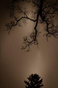 by bluelunaphotography - Blue Luna Photography
