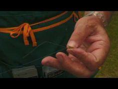 PESCA TROTA LAGO - MONTATURE E NODI prt. 2/5 - YouTube