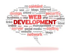 A professional company of website design in Houston plays a major role in helping you get the results what you have dream of.