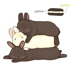 When we found Lola Funny Bunnies, Baby Bunnies, Cute Bunny, Cute Animal Drawings, Kawaii Drawings, Cute Drawings, Bunny Drawing, Bunny Art, Poses References
