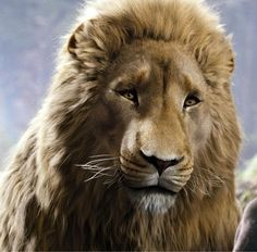 Aslan - The Chronicles of Narnia
