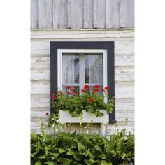 David Chapman / Design Pics Stretched Canvas Art - Log Home And Flower Box In The Window; Iron Hill, Quebec, Canada - Medium 12 x 19 inch Wall Art Decor Size. Wood Flower Box, Flower Boxes, Home Decor Vases, Diy Home Decor, Simple Landscape Design, Landscape Designs, Window Box Plants, Log Home Decorating, Bedroom Lighting