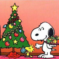Snoopy / Christmas