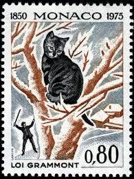 Resultado de imagem para cats on stamps