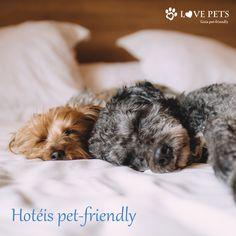 Vários hotéis permitem a hospedagem de Pets junto com seus donos... a viagem fica muito melhor na companhia de seu melhor amigo!!!