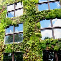 La ville est souvent caractérisée en opposition aux espaces naturels qui l'entourent. Le végétal serait alors l'une des composantes qui différencierait ville et campagne. Pourtant et quelque soit la ville, le végétal est présent à divers degrés au travers des espaces verts, des alignements d'arbres, des espaces fleuris ou plus simplement des  herbes qui poussent sur les trottoirs et des fleurs qui ornent nos jardins. Dans quelle mesure les habitants ont besoin de Nature et quel est son rôle…
