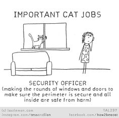 Important Cat Jobs: Security Officer Crazy Cat Lady, Crazy Cats, I Love Cats, Cool Cats, Introvert Cat, What Cat, Cat Facts, Here Kitty Kitty, Cat Life