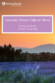 I have created and shared so many Aromatherapy recipes for sleep…but there is always room for more! Find out my favorite blends here: http://www.aromahead.com/blog/2015/05/25/favorite-aromatherapy-recipes-sleep/