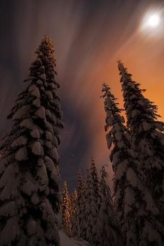Snoqualmie Pass, Washington by kcvensel ~~Amazing moon & clouds.the wind was blowing the low hanging clouds at a quick pace.snowshoed up the Commonwealth Basin trail .there was also a glow from the lights at Snoqualmie Summit West ski area. Beautiful World, Beautiful Places, Beautiful Pictures, Amazing Places, Winter Schnee, All Nature, To Infinity And Beyond, Winter Wonder, Pics Art