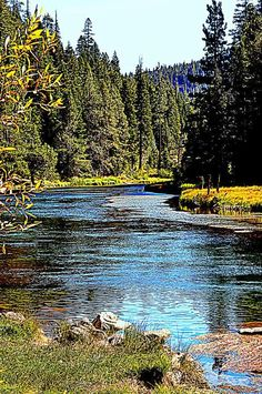 Truckee River, California, Nevada, USA  - Beautiful place  and  many great campgrounds