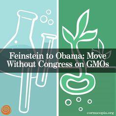 Feinstein to Obama: Move Without Congress on GMOs. More Here: http://www.cornucopia.org/2013/12/feinstein-obama-move-without-congress-gmos