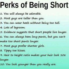 Short girl jokes