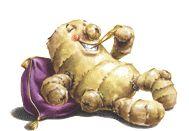 Ginger - multipurpose healer - colds, nausea, indigestion, sore throat . . .