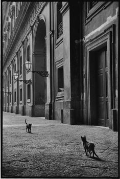 Photograph by Leonard Freed. Naples, 1956.