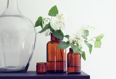 Amber bottles with organic springs of greenery & white blooms.