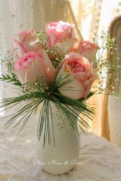 fresh roses in the winter ~ carolyn aiken, Aiken House & Gardens