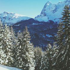 Lauberhorn und Eigernordwand | Berner Oberland
