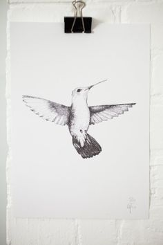 The Hummingbird Illustration Print by Lamplighter London would make a cute tattoo