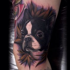boston terrier tattoo ideas