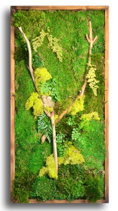 18x36 preserved moss wall art. no water, no care! vertical green wall