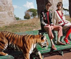 With tigers! #Gucci Spring 2017! gucci @_glen_luchford lallo25 via @image_amplified  https://instagram.com/p/BOKF-jVDE6k/