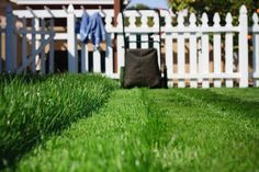10 Ways to Care for Your Lawn Before Mowing Season