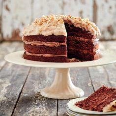Rina van der Merwe van Amersfoort, Mpumalanga, is die wenner van ons bakkompetitise se afdeling vir groot koeke. No Bake Chocolate Cake, Chocolate Guinness Cake, Baking Chocolate, My Recipes, Baking Recipes, Cake Recipes, Favorite Recipes, Recipies, Lemon Velvet Cake