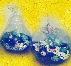 Sıradan hediyelerden solan güllerden bozulan çikolatalardan sıkıldıysanız Senotun bahçesinden bir terrarium ile kendinizi ya da sevdiklerinizi Mutlu edebilirsiniz. Nikah nişan ya da Bebek hediyeliği olarak da konuklarınıza mini bahçelerimizden anı bırakmak için iletişime geçin#succulent #succulentlife #succulove #terarium #teraryum #terrariumlove #terrariumgarden #terrariumgift #terrariumglass #terarriumgarden #bird #birdlife #kisiyeozeltasarim #sevgiylebüyütün by senotun_bahcesi