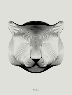 Puma, by Andrea Minini | My Modern Shop