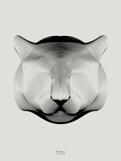 Puma, by Andrea Minini | My Modern Shop