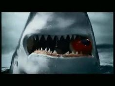 ★ Fiery Red ★ Shark (VIDEO) https://www.facebook.com/video.php?v=757150921034192&set=vb.416620531753901&type=2&theater