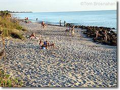 Caspersen Beach, Venice Florida Best place to find shark's teeth.