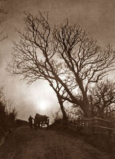 Rural pathway near Whitby, England by Francis Meadow Sutcliffe (circa late 19th century)