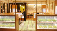 ミニ植物工場を店舗内に備えた「サブウェイ野菜ラボグランフロント大阪店」 - GIGAZINE Planting Flowers, Divider, Projects, Room, Display, Furniture, Garden, Home Decor, Log Projects