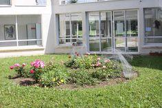 ML. Rocher, Meung s/Loire Windows, Plants, Contemporary Art, Plant, Ramen, Planets, Window