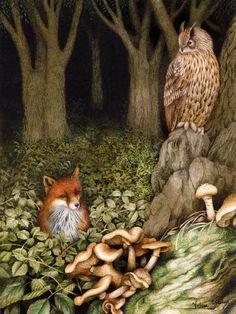 A Owl and a Fox. Valerie Greeley.