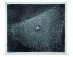 Vija Clemins, Web #1, 1998 Charcoal on paper.