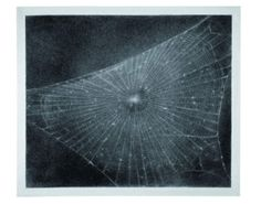 Vija Celmins  Web #1  1998 Charcoal on paper. Collection of Anthony d'Offay, London.