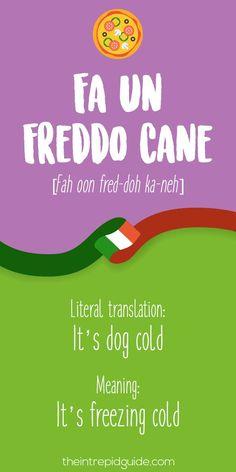 Italian Expressions Fa un freddo-cane