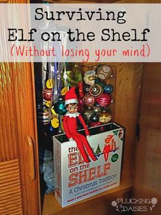 Surviving Elf on the Shelf (without losing your mind) | Pluckingdaisies.com