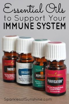 Which essential oils do you need in your stash for cold and flu season this year? Find out which essential oils to support your immune system before the season starts.