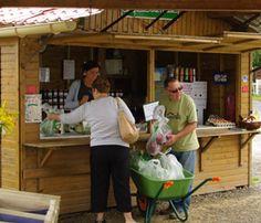 Cueillette de la Ferme du Paradis, cueillette Chapeau de Paille, à Seclin, Nord 59, venez cueillir vos légumes, fruit et fleures de saison et de qualité, fraises, salades,… Visitez la boutique de la Ferme du Paradis