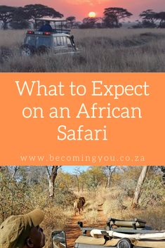 As a seasoned safari goer, I love returning to the bush. Not only to revel in the sights and sounds of nature at its most raw, but also to be reminded of Kruger National Park, National Parks, Safari Holidays, Game Lodge, Animal Tracks, Private Games, Luxury Tents, Game Reserve, A Whole New World