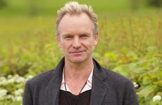 Sting-Field of gold perhaps?
