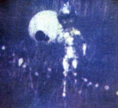 1967 North Carolina by Ron Hill. #alien #aliens #ufos #paranormal