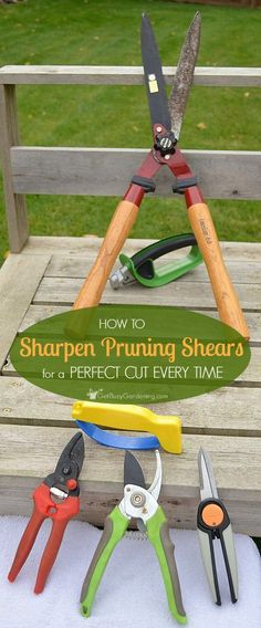 Just because your pruning tools are dull doesn't mean you need to buy new ones! It's super easy to sharpen pruning shears so they'll work like new again.
