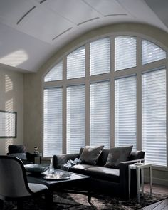 I just love the look and functionality of Alustra® Silhouette® window shadings -you have the benefit of a sheer for diffused light, with the added horizontal or vertical membrane that acts as an active blind within the sheer. When fully engaged, you have complete privacy.